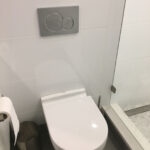 Main bathroom - toilet